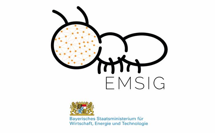 """""""EMSIG"""" – Energy Management System for integrated business models"""
